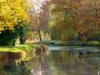 L'automne au bord de l'eau