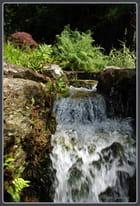 L'eau ruisselle dans le parc de Trévarez