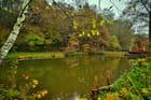 L'étang coloré