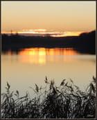 L'étang de Diefenbach