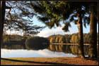 L'étang de Hanau et le Waldeck