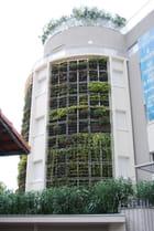 l'immeuble vert