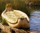 La barque en roseaux