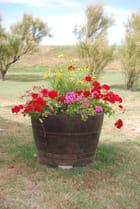 la barrique jardinière