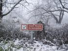 La blanche route fleurie du Beaujolais