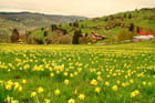 La Bresse Brabant