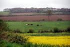 la campagne dans les Côtes-d'Armor