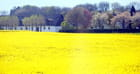 la campagne danoise