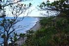 la côte à Sainte Suzanne