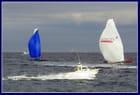 La course du Rhum 2010