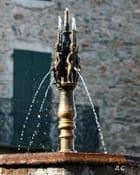 """La Fontaine """"dels pissaïres"""""""
