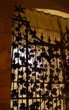 La grille au décor de vigne