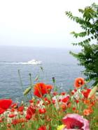 La mer en fleur