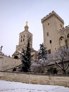 La Métropole Notre Dame des Doms