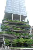 la nature dans la ville