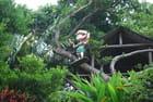 la nature luxuriante du village Ryukyu Mura