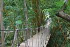 la passerelle du Gumbalimbapark