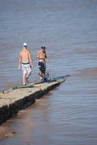 la pêche à la crevette sur La Gironde