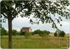 La petite maison (FA)