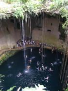 La piscine particulière