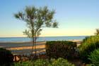 La plage d'Argelès - 5