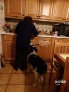 La préparation du dîner