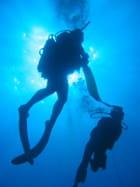 La Réunion et ses fonds marins
