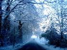 La route vers le grand froid