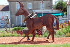 la statue de cheval