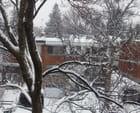 La tempête du 28 mars 2014