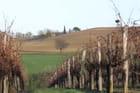 La Toscane française, le Gers