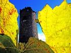 La tour des vignes