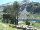 Lac d'Aubert - parc de la Néouvielle