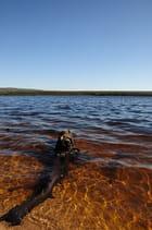 Lac de Charpal (1)