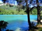Lac de Dardennes (4)