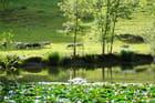 Lac du Rosaire
