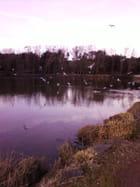 Lac du Tanchet