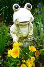 Large sourire d'une grenouille heureuse