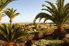 Las Dunas de Gran Canaria