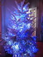 Le beau sapin bleu
