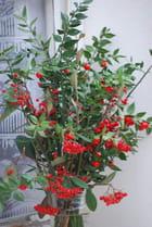 Le bouquet d'hiver