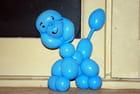 le caniche bleu