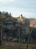 Le chateau aux oies