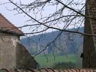 Le château bourgeonne