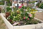 le cimetière fleuri