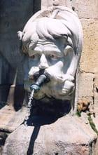 Le cracheur d'eau