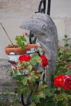 le dauphin en bois flotté