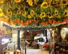 Le grenier aux fleurs