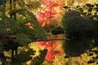 Le jardin japonais de Maulévrier