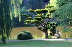 le jardin oriental,pays de Loire,